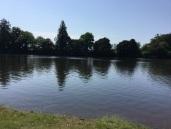 Le lac de Viviane